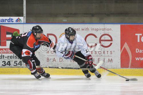 eishockeybundesliga